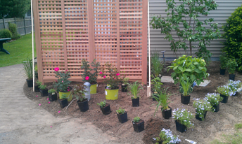 Trellis-garden-set-up