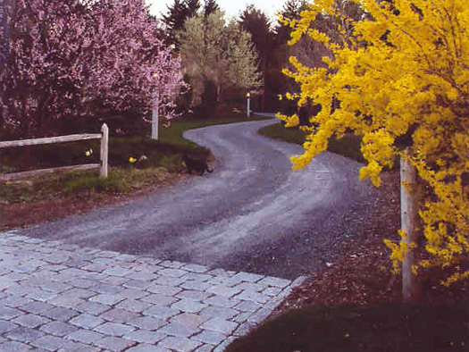 DRIVEWAYS - LINED WITH GARDEN BLOSSOMS