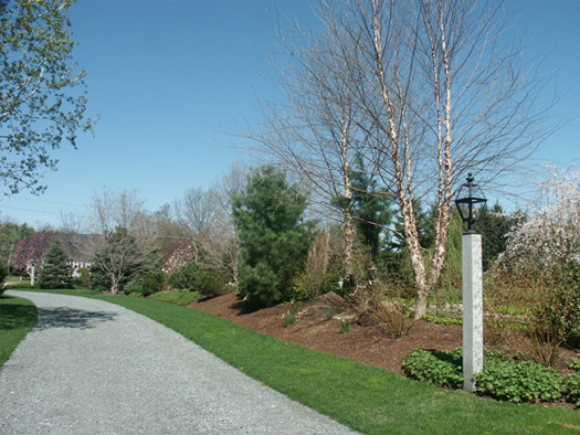DRIVEWAY - ECO-FRIENDLY CHOICES FOR YOUR SUSTAINABLE LANDSCAPE