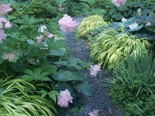 SHADE GARDENS - COOL FOLIAGE WITH A SPLASH OF PINK