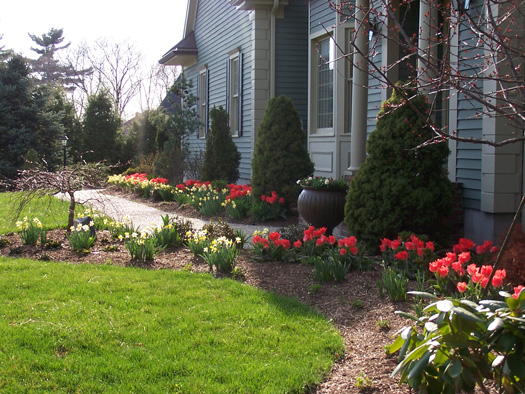 bulb garden landscaping ideas