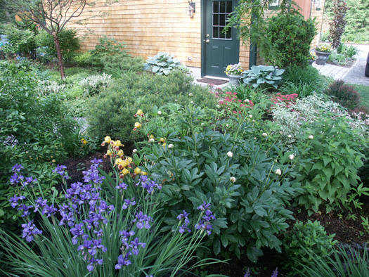 Perennial landscaping ideas for Perennial landscaping ideas