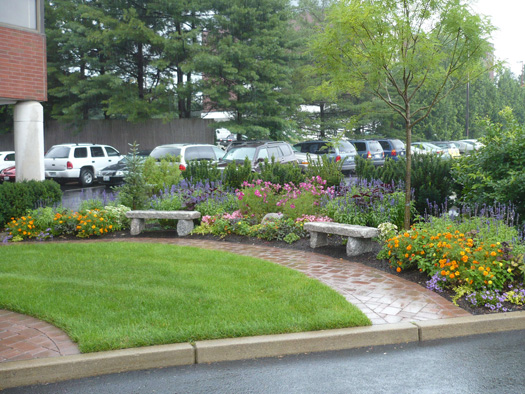 ANNUAL GARDENS - COMMERCIAL USE OF ANNUALS IMPROVES VISIBILITY