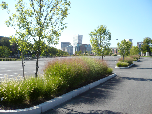 Landscape Field Videos: Maintaining an Urban Landscape