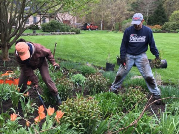 garden spring preparation