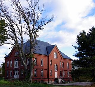 medfield state hospital building and tree