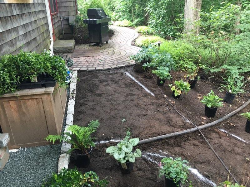 new garden path also