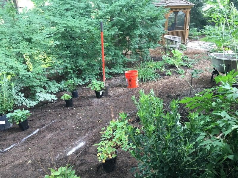 new path garden