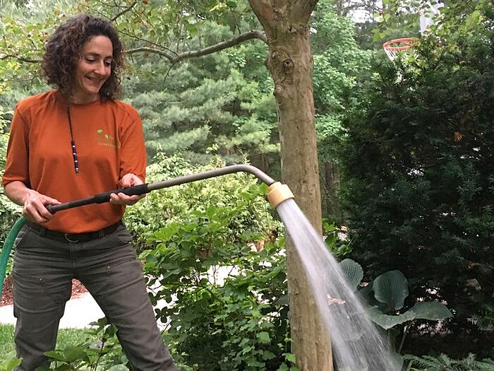 tips-prepare-garden-for-summer