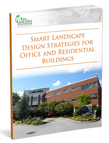 Design Strategies for Commercial Landscapes - A valuable guide for commercial property owners.