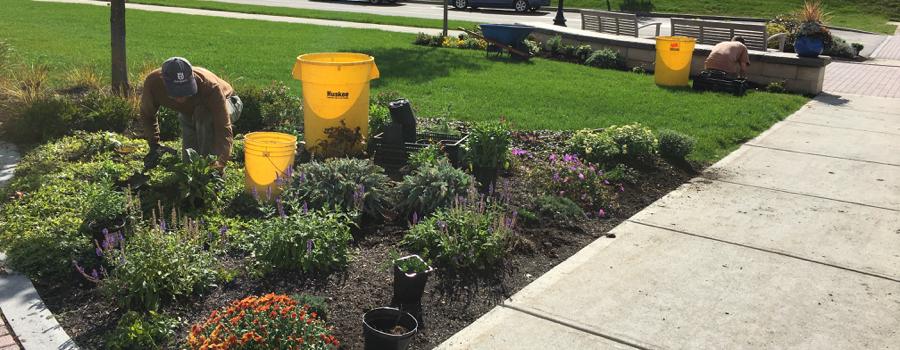 Baseline fine gardening care items