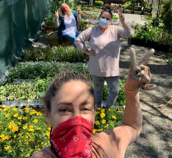 Organizing-plants-with-masks