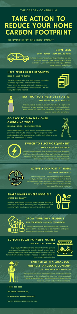 10-steps-infographic