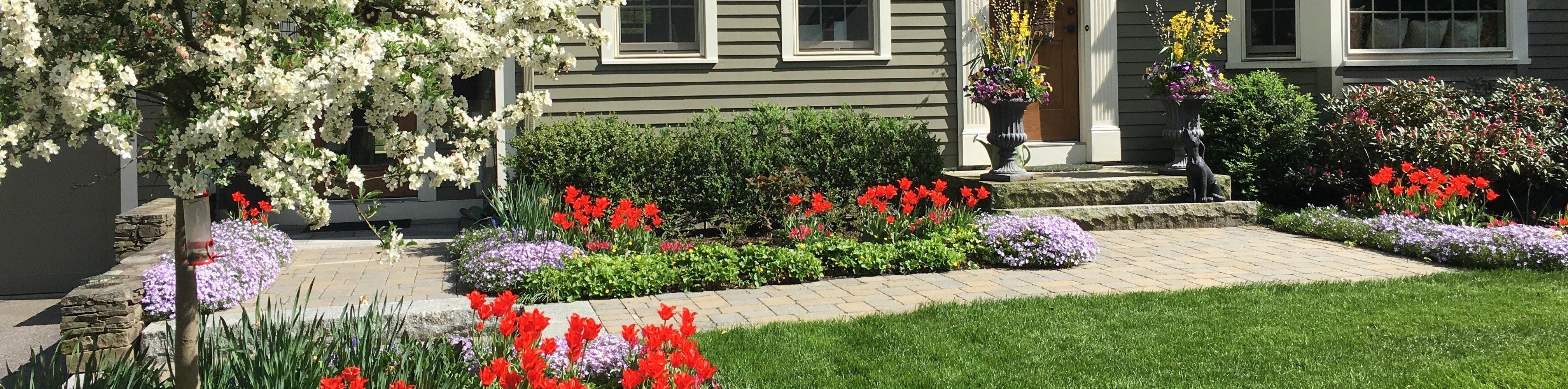 05-13-17 Spring Blooms - Tulips - Mykulak (5)-1