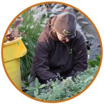 Fine-Gardening-Intern