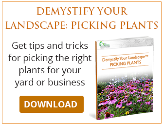 Demystify Your Landscape by Learning to Pick Plants