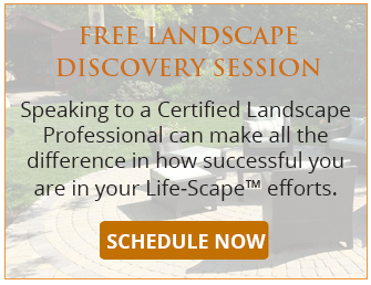 Free Landscape Discovery Session