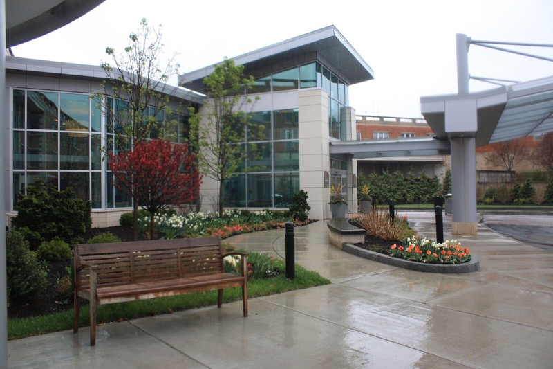 Tips to Maintain Your Commercial Landscape for Neatness and Safety