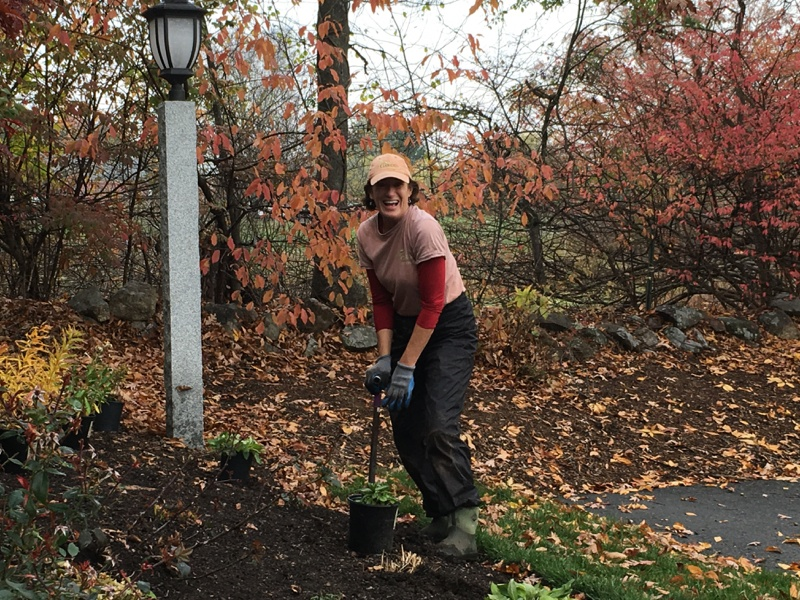 3 Reasons Why Fall Is Perfect For Planting