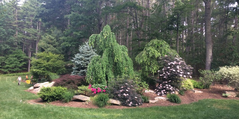 5 Best Money-Saving Landscape Tips