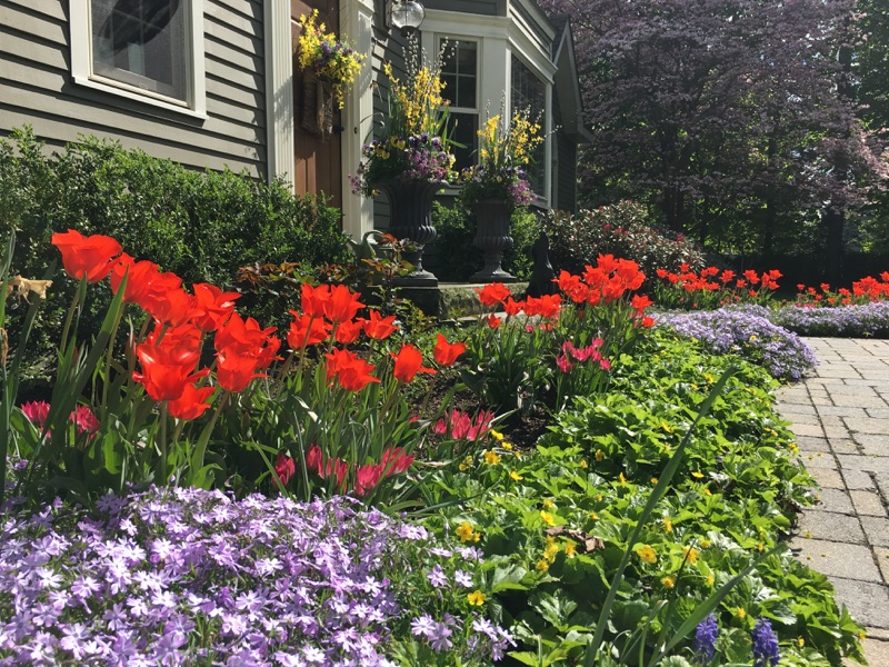 Stepping Back: Tips for when life calls you away from gardening