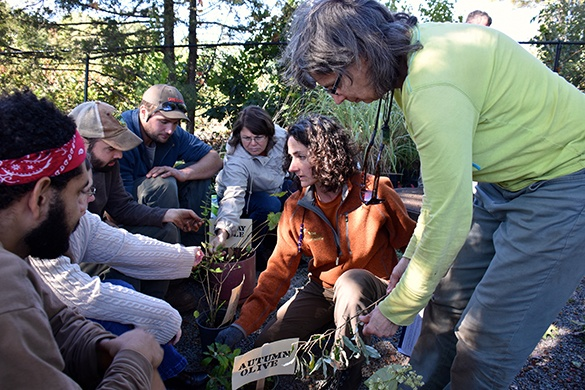 Invasive-Plants-Workshop.jpg