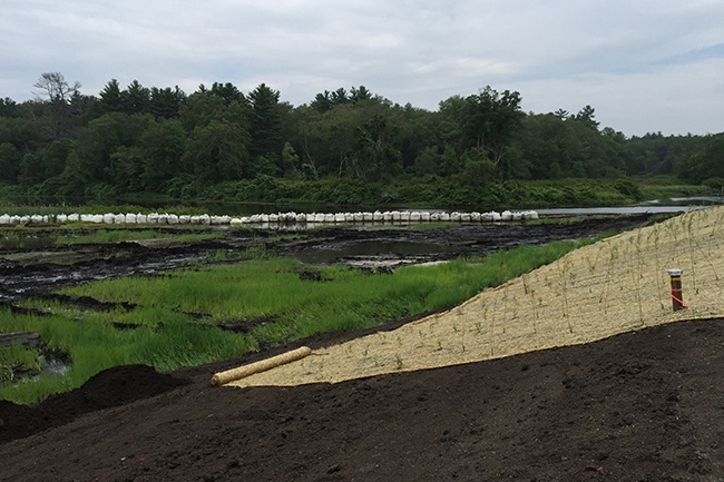 10-Flood-Plain