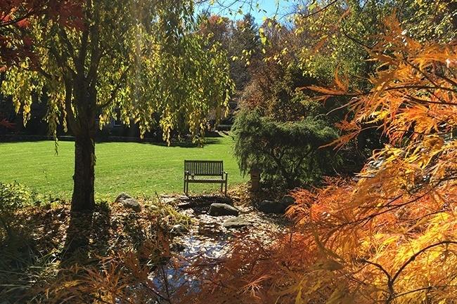 15-_Garden-Dreamscape