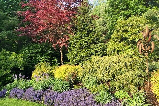 4-_Garden-Dreamscape