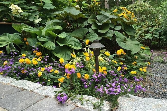8-_Garden-Dreamscape