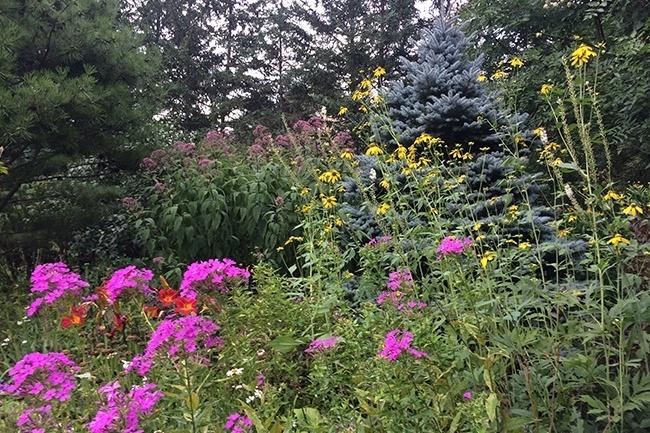 9-_Garden-Dreamscape