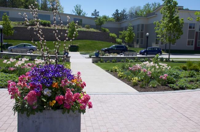 spring whole house landscape