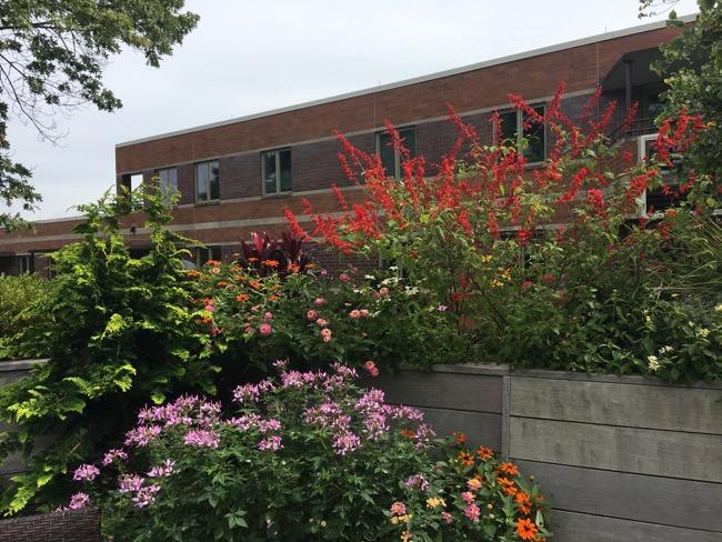 9-Summer-built-in-planters.jpg