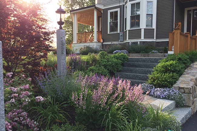 1-Residential-Landscape